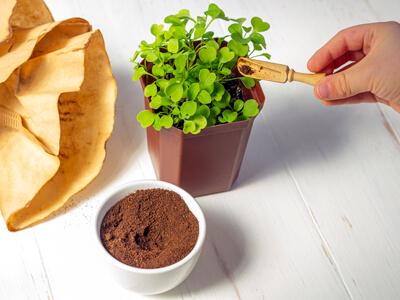 درست کردن کود خانگی ارگانیک با مواد طبیعی